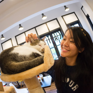 Cat Cafe Photoshoot